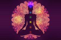 Il Percorso Meditativo secondo il Buddhismo